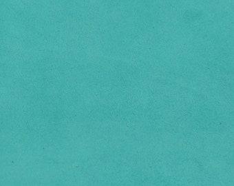 Turquoise Blue Velvet Lambskin Coupon