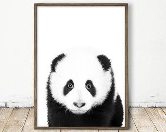 Baby Panda Art, Panda Print, Nursery Wall Decor, Baby Panda Print, Baby Room Art, Baby Zoo Animal, Panda Decor, Baby Panda Art, Panda Print