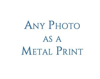 Metal Print Wall Art Decor. Order any photograph as a Metal Print. Ready to Hang.