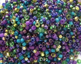 Grammes de semences perle Mix 15 royauté 10/0