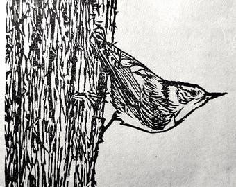 "Nuthatch, handmade woodblock print, 5""x7"""