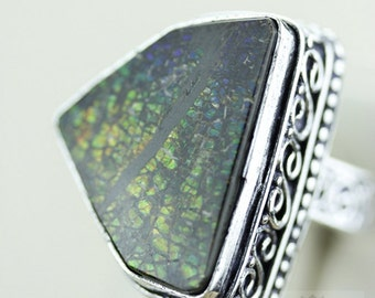 Size 8 GENUINE CANADIAN AMMOLITE (Nickel Free) 925 Fine S0LID Sterling Silver Ring & Free Worldwide Express Shipping r1638