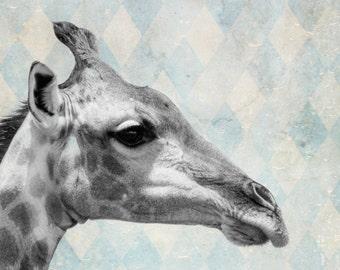 Giraffe Photography, Animal Photography, Africa, Wild Animal, Wilderness,  Wall Art, Retro Art, Retro Animal, Art Print, Animal Print
