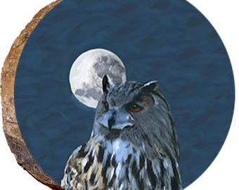 Owl in the Moonlight - DAI180