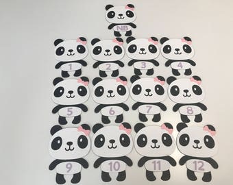 Girl Panda Monthly Banner, Panda First Birthday, Panda Party