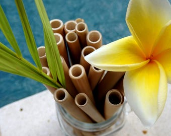 Bamboo Straws 5 Set ecologically and reusable + cleaning brush!