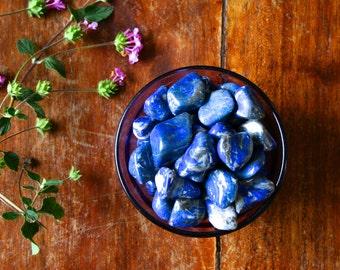 Large Tumbled Lapis Lazuli Grade A Gemstone Specimen Pocket Rock Healing Crystals & Stones Energy Medicine Wicca Witchcraft Altar Meditation