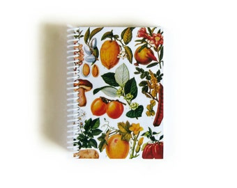 Fruits Notebook A6 Spiral Bound