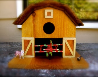The Barnstorming Birdhouse