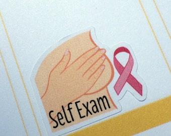 Self Exam Planner Stickers for Erin Condren, Plum Paper, Happy Planner, InkWell
