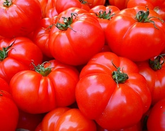 Hamson DX 52 Tomato Heirloom Garden Seed Non-GMO 30+ Seeds Super Sweet Early  Naturally Grown Open Pollinated 30+ seeds Gardening