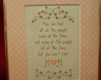 You Can't Fool Mom - Framed Counted Cross Stitch