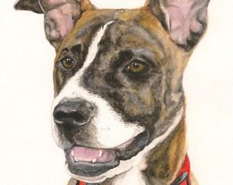 Custom Watercolor Pet Portrait 8x10