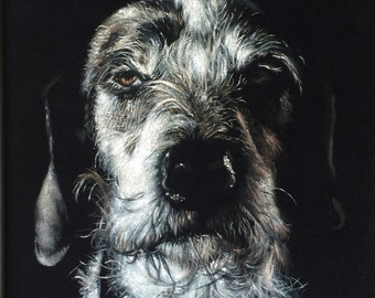 Custom Pet Black Velvet Portrait -  11 x 14