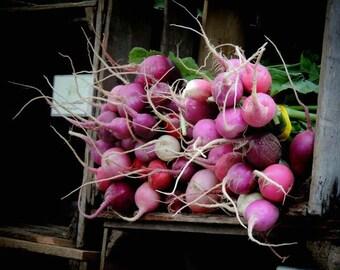 Radish Photograph - Farmers Market Art - Kitchen Art Decor - Nature Vegetable - Root Vegetable - Food Photograph