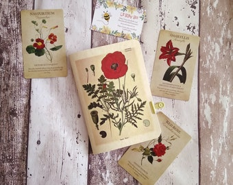 Poppy Botanical Vintage Notebook (17x12 and 15 x 10.5 cm)