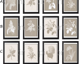 Flower Garden Botanical Print Gallery Set of 6 - Art Prints (Featured in Tan Background and Cream) Creme Khaki (Unframed)