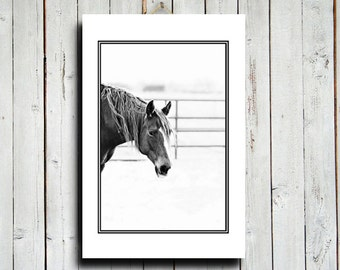 "Horse Face - Horse decor - Canvas 16x24"" - Black and White Horse decor - Horse art - Western art - Equine art - Horse photography"