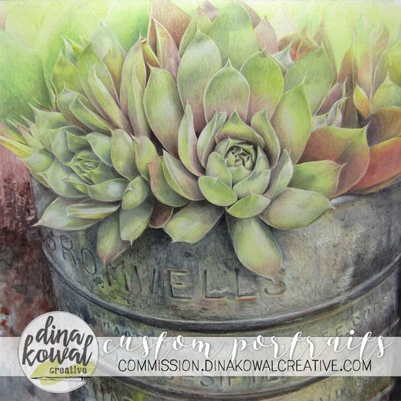 Where You're Planted - succulent - vintage planter - desert - hens and chicks