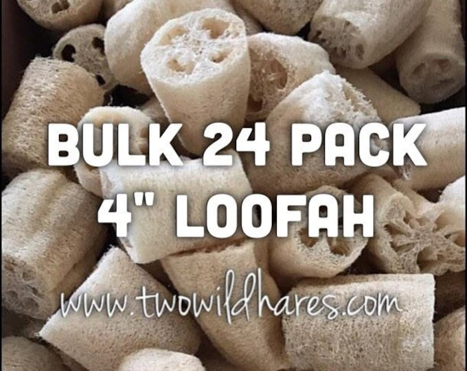 "BULK 24 - 4"" Whole LOOFAH Center Piece, Natural Sponge, Exfoliant, Bulk Price, Two Wild Hares"