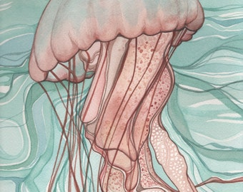 Coral Sea Nettle JELLYFISH 5 x 7 print of detailed watercolour artwork in soft pastel turquoise and salmon pink earth tones, fairytale ocean