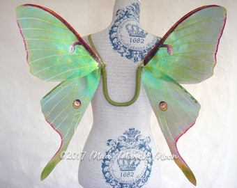Luna Moth Costume wings, transparent iridescent wings, adult size, hand tied ribbon, handmade fairy wings, wearable wings, cosplay wings