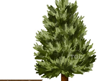 Evergreen Tree Clip Art, Hand painted clip art, evergreen graphic, pine tree clip art, winter tree art