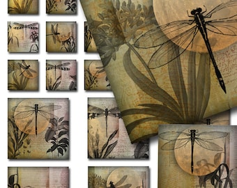 Dragonflies Moon Ephemera Combo Collage Sheet 1 and 2 inch Squares Instant Download Digital JPEG Images (A-27-12)