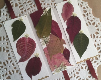 Poinsettia Bookmarks, Christmas Gift, Pressed Flower Bookmarks, Stocking Stuffer, Holiday Gift, Book Accessory, Real Poinsettia Leaves