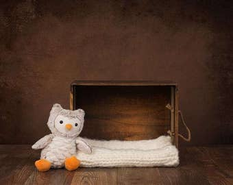 Digital Newborn Backdrop Owl and Box. One of a kind prop!