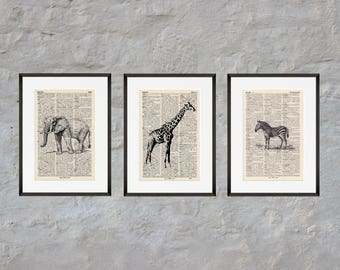 Prints set of 3 - SAFARI - antique book page - portrait