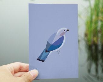 postkaart met sialia