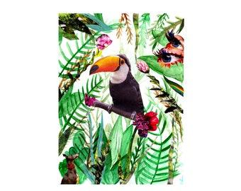 Tropical Vision- Illustration Art Collage Print