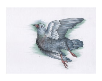 "Marker Illustration, Hand Drawn Print, Decoration, ""Pigeon"""
