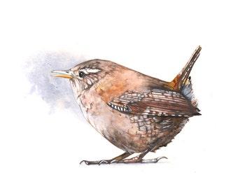 Wren watercolor painting PRINT of watercolor painting wall art print - bird art. wildlife print W5215 - wren watercolour print A4 print