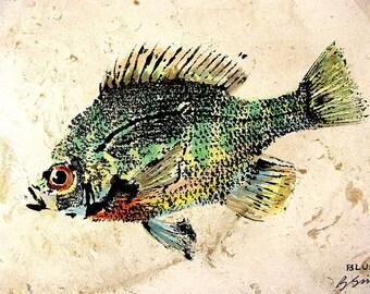 GYOTAKU fish Rubbing Colorful Sunfish 8.5 X 11 quality Art Print Bluegill Cottage Decor by artist Barry Singer
