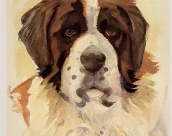 Vintage SAINT BERNARD Dog Print Vintage St Bernard Illustration Kids Room Decor Gallery Wall Art Dog Lover Gift for Birthday 1055