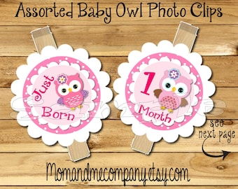 Owl First year photo clip banner newborn to 12 months first year banner 12 month banner Owl birthday 1st year photo banner RIBBON INCLD