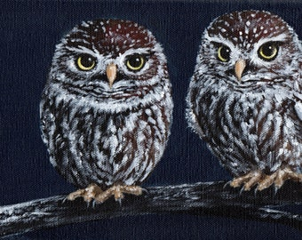 Little Hooters -  Original Acrylic Owl Painting on deep edge canvas