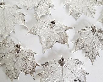 """Ein echtes Silber Maple Leaf Anhänger - 2"""" bis 2,25"""" breit - asymmetrische -"""