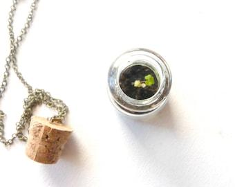 Clover terrarium necklace pendant green look ( leaf, nature, living, ecosystem, forest, woodland ) 09