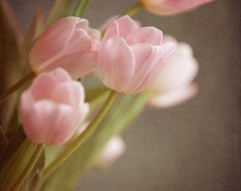 Pink Tulip Print, Spring Flower Photo, Easter Flowers, Botanical
