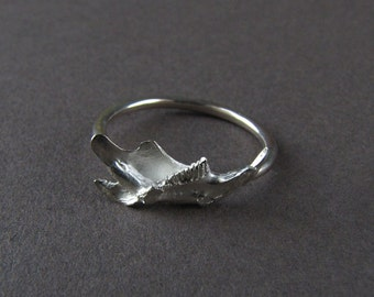 Sterling Silver Cast Mouse Jaw Ring // cast bone jewelry // gifts for her