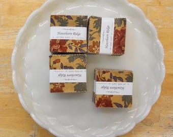 Hawthorn Ridge mini charm pack by Jan Patek Quilts for moda fabrics