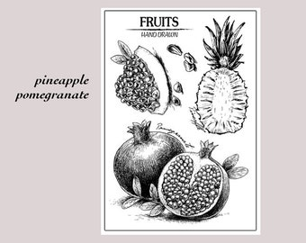 clear stamp set /clear stamps /BOJO Journal stamp/fruit themed pineapple pomegranate