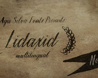 Lidaxid two ttf digital fonts