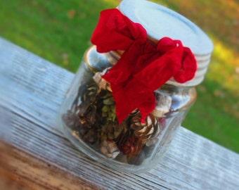 Adorable Painted Hemlock Pinecones in Mini Mason Jar