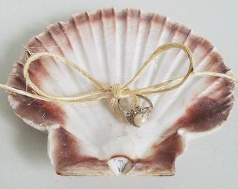 Scallop Shell Ring Bearer Pillow Rustic Beach Wedding Decor