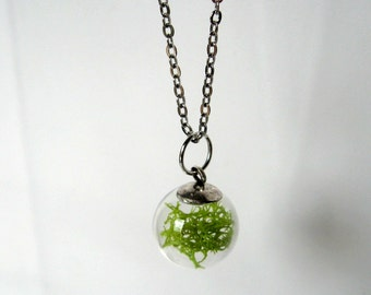 Bit of Moss Necklace - Botanic jewelry, reindeer moss, real moss, lime green, glass vial, terrarium necklace, Spring necklace, natural, ooak