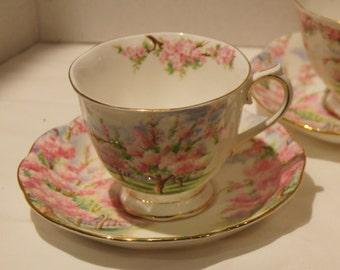Royal Albert Blossom Time Countess Tea Cup and Saucer